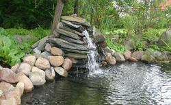 Wodny ogród: oczko wodne, fontanna, wodopój, kaskada, źródełko