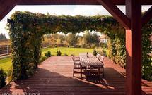 Pergole ogrodowe - jak dzięki pergoli stworzyć kameralny nastrój