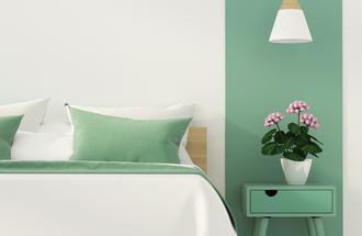 Kolor zielony na ścianie