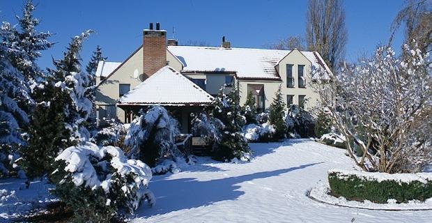 Zimą w ogrodzie